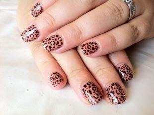 Рисунки на маленьких ногтях, леопардовый шеллак маникюр